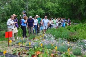 Экскурсия по Горному ботаническому саду (фото А.С. Прокопьева)