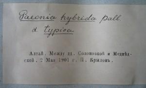 """Надписи """"типографским"""" шрифтом наносятся с помощью штампа."""