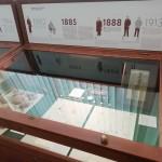 Экспозиция Гербария ТГУ на выставке