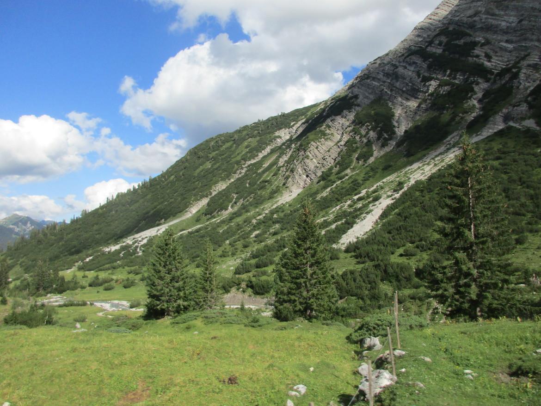 Горы Арльберг покрыты стланниковой сосной.